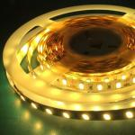 SMD5050 Decorative DC 12V 24V High quality Flexible 5m LED IP20 strip light