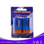 NiMH Rechargeable Battery D10000mAh 1.2V