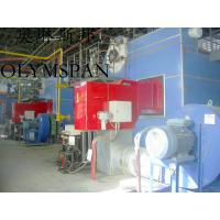 6000kw efficiency natural gas fired boilers for home heating