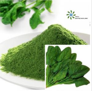 China Green Organic Spinach Powder FDA Certified Vegetable Extract Powder on sale
