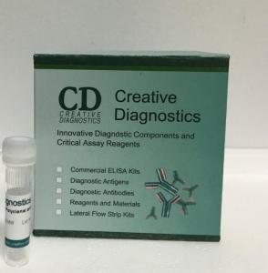 China Okadaic Acid (DSP) ELISA Kit  DEIA6822 on sale