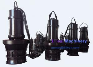 China 15. QZ Submersible axial flow pump  001202 on sale