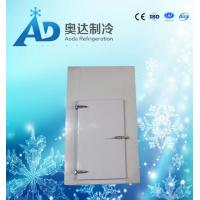 China AD-11 colored steel plated half-buried hinge door for cold room on sale