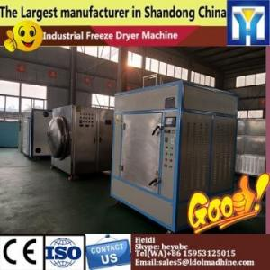 China Hotsell freeze drying machine for Honey-dew melon /freeze dryer  commercial freeze dry machine     food drying machine on sale