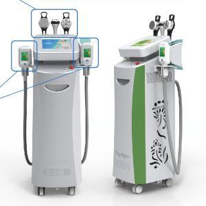 China multifunctional cryolipolysis machine freezing fat machine / cryotherapy device medical CE on sale