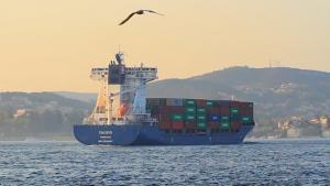 China Great Link Ocean Cargo Shipping for Shenzhen / Huangpu / Shanghai / Nansha to Melbourne on sale