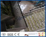 Chaîne de fabrication chinoise de jus de fruit de date, installation de transformation de pulpe du fruit ISO9001