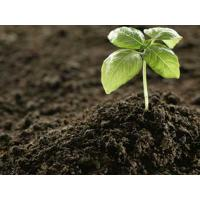 Organic Fertilizer/Humic Acid/Humic Acid Potassium /Fulvic Acid Potassium Fertilizer/Humic Acid(Dry Basis): 70%