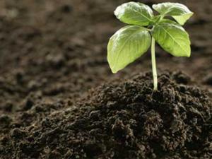 China Huminrich NPK Humate Fertilizer Powder Humic Acid Fulvic Acid With Trace Elements on sale