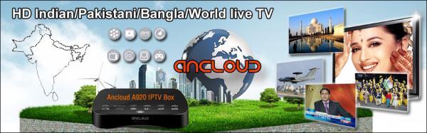 HD INDIA / PAKISTANI / BANGLA LIVE TV IPTV BOX ANCLOUD BOX for sale