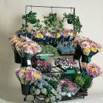 El cubo del florista/de la flor stand-GCDB-09 diez con tres estantes se coloca