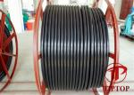 ASTM A312 Ss Welded PVC Jacket Multi Core Coiled Tubing