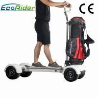 1000w Electric Ride On Golf Scooters 60-80km Mileage 4 Wheel Big Tire Electric Skateboard