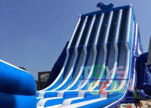 China Commercial Biggest Backyard Inflatable Water Slides With Climbing Wall 130ft on sale