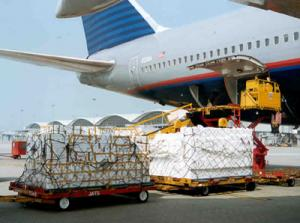 China Air Freight from Xiamen to New Delhi on sale