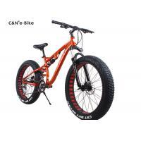 Classic Environment Friendly Electric Fat Tire Snow Bike , Electric Assist Fat Bike
