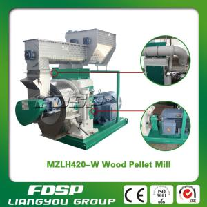 China Leading Feature Sustainable Development Biomass Pellet Mill on sale