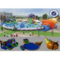 PVC 30M Inflatable Water Parks