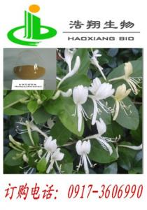China HoneySuchle Flowers Extract on sale