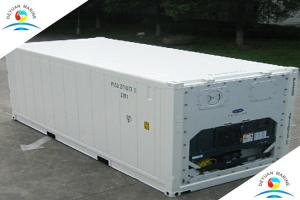 China High Strength 20ft Refrigeration Pallet Wide Container Thermo King Reefer Container on sale