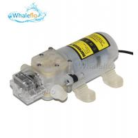 Whaleflo 70W 12v 24v dc food grade wine milk pump Self-priming Pump Automatic pressure control water pump