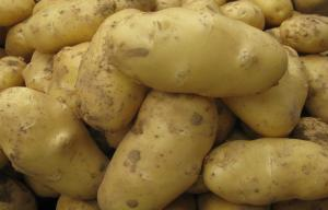 China White Skin Shandong Holland Potato Rich Nutritions For Storing on sale
