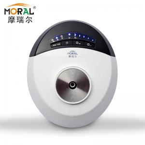 China Portable Plug-in Home Ozonator with Time Setting for Removing Formaldehyde on sale