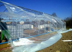 China plastic film agriculture greenhouse,6 mil poly anti-uv plastic greenhouse film,Anti-fog UV resistant,mushroom,TOMATO PAC on sale