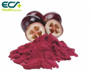 China Red Cranberry Fruit Powder , Natural Food Supplement Powder Prevent Cancer on sale