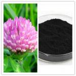 Trifolium Pratense Extract Natural Red Clover Extract
