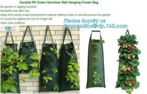 China 4 Pockets Permeable Non-woven fabric 26x65cmx1mm Vertical Wall Planting Bag for flower vegetable lettuce ferns, bagease on sale