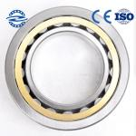 China Brass Cage Bearings cylindrical roller bearing  OF NU / NJ203 bearing wholesale