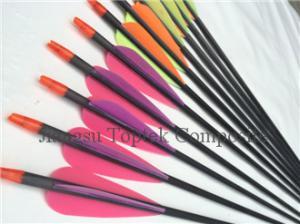 China carbon fiber arrow, purple vane carbon archery arrow, customized vanes carbon arrow on sale