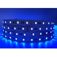China DC24V available 5050 RGBW RGBWW led strip 5 chip in 1 led led rope light for decoration on sale