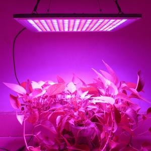 China 45 Watt Waterproof LED Grow Lights Panel Dimming Switch For Indoor Plants Seeding on sale