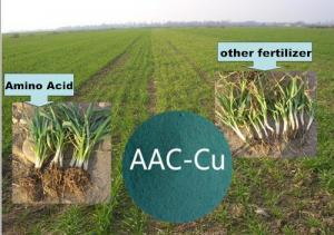 Super Agriculture 40% Amino Acid Liquid Fertilizer Organic