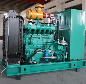 China 75kw 25kw 15kw Electric Natural Gas Generator Power AC brushless alternator IP23 on sale