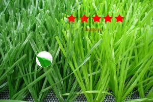 China Professional Football Artificial Turf/50mm thickened double spine grass(LTGSDS503) on sale