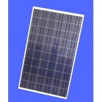 Industrial Polycrystalline Solar Panel , 265W Polycrystalline Solar Module