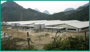 China prefabricated light steel frames structural workshop on sale