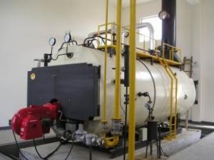 China le bois de 9 tonnes, gaz, pétrole, double carburant a mis le feu à l'efficacité de chaudière à vapeur on sale