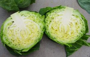 China Contains Carotenes , Thiocyanates Round Chinese Napa Cabbage Low Calories on sale