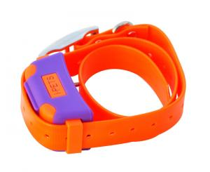 China Bluetooth 4.0 Remote Pet Training Collar Orange With i-Phone Controller on sale