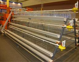 China favorable price easy to assemble layer galvanized chicken cage supplier