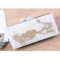 Cloth Lining Acrylic Clutch Bag , Acrylic Evening Bag Painted Women And Hair Pattern