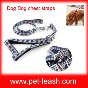 China Big dogs special chest straps + leash QT-0087 on sale