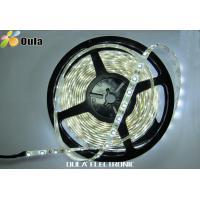 4.8W Per Meter 5050 RGB Magic Flexible LED Strip Waterproof With 12V DC, IP67 or IP65