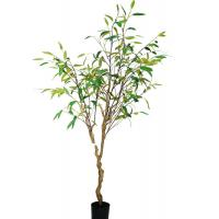 Asethetic Realistic Fake Plants , Beautiful High End Artificial Trees Contemporary