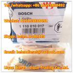 BOSCH Original and New Pressure Relief Valve 1110010017 , 1 110 010 017