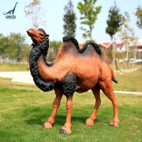 China Theme park decoration fiberglass animal camel statue on sale